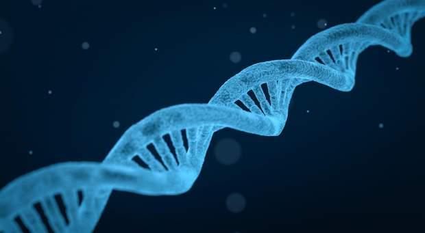 ДНК-тести можуть допомогти знайти спадкові хвороби