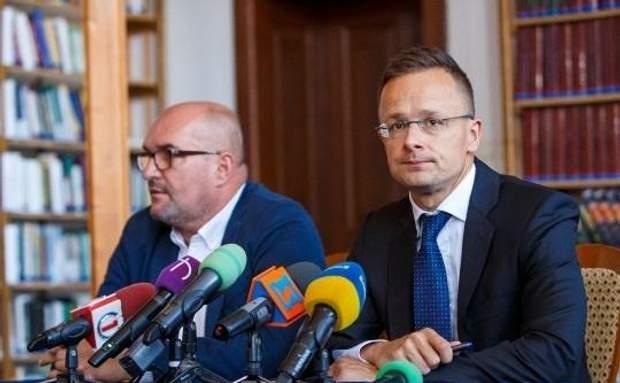 Василя Брензовича та міністра іноземних справ Угорщини Петера Сіярто