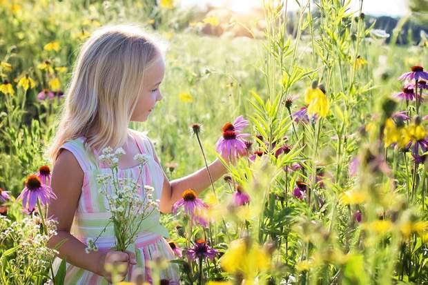 Стригучий лишай найчастіше виникає у дітей