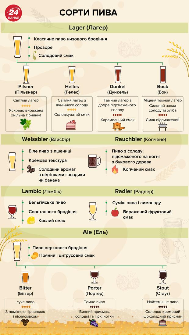 Сорти пива і як розрізнити