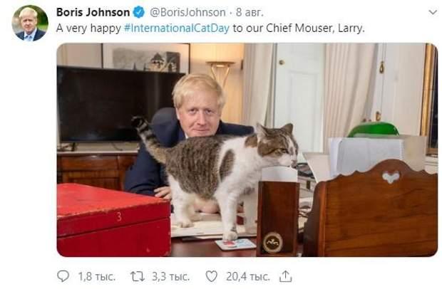 Джонсон кіт