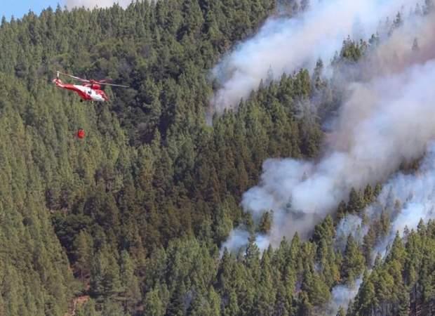 Гран-Канарія ліси пожежа