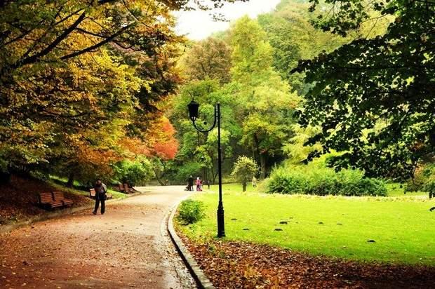стрийський парк