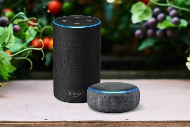 Amazon прослуховують розмови користувачів Echo