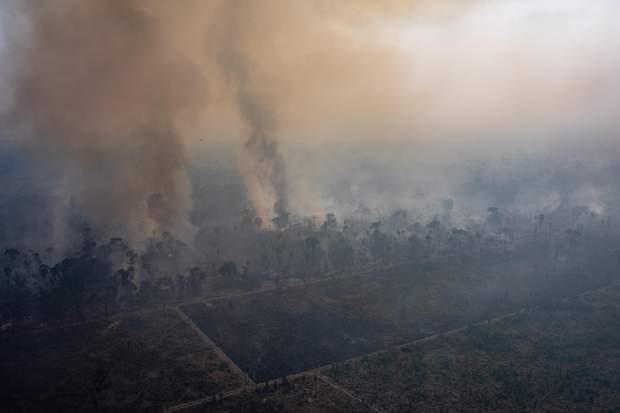 пожежа Амазонка Амазонія ліси тропічні ліси
