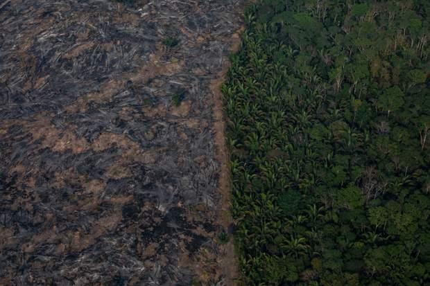пожежа бразилія
