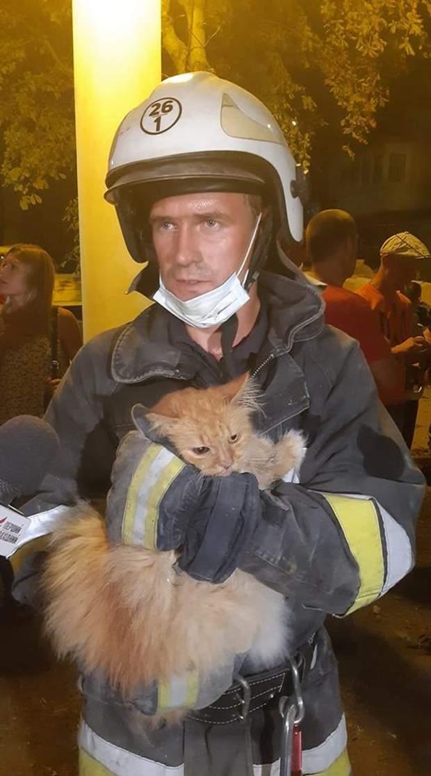 дрогобич рятувальники кіт дснс