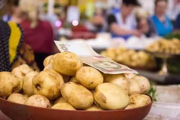 картопля, врожай, запаси на зиму