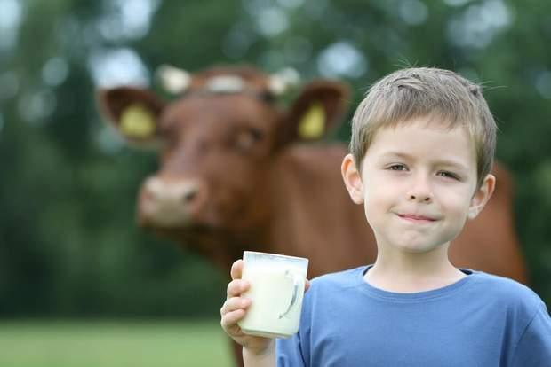 Подходит ли детям растительное молоко – новые исследования