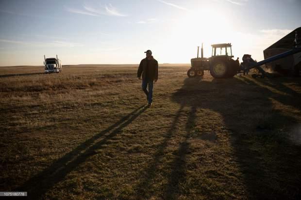 Мораторій про продаж сільськогосподарської землі