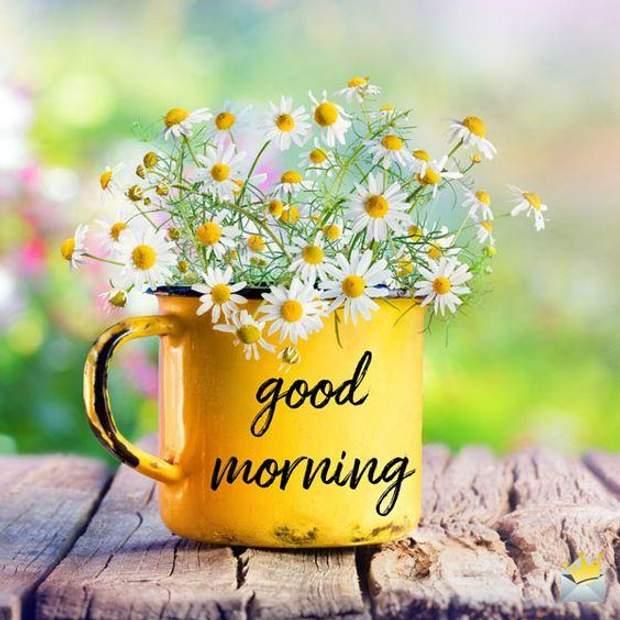 Картинки Добрий ранок