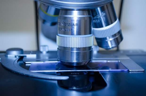 Нові ліки проти раку знищили пухлину у мишей