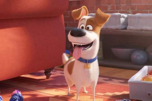 Головний герой мультфільму – собака Макс
