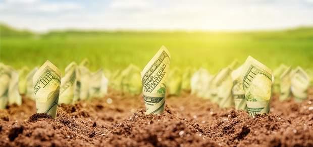 ринок землі реформа
