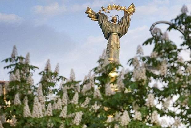 Хрещатик, дерева, каштани, скандал, Київ