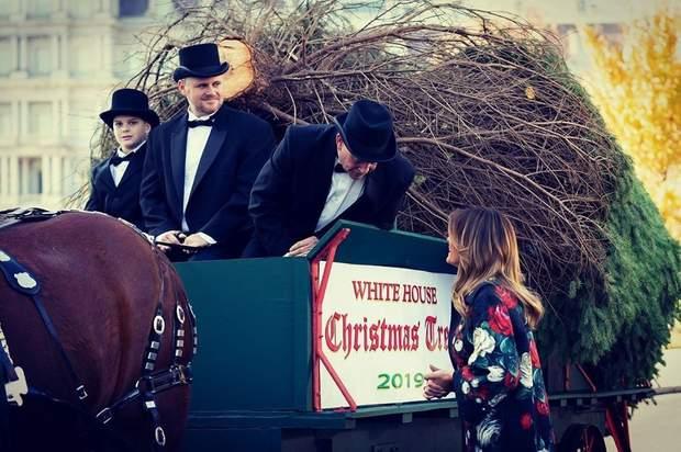 Меланія Трамп зустріла новорічну ялинку