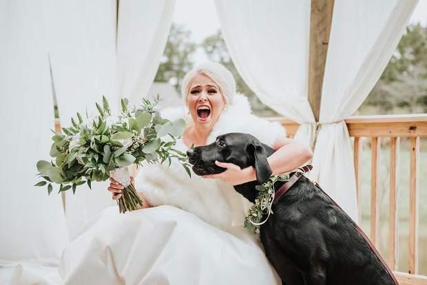 Лабрадор постійно був поруч на весіллі