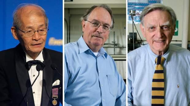 Нобелівська премія-2019, Ноебль, приз, Хімія, Джон Б. Гуденаф, М. Стенлі Віттінгем та Акіра Йошино