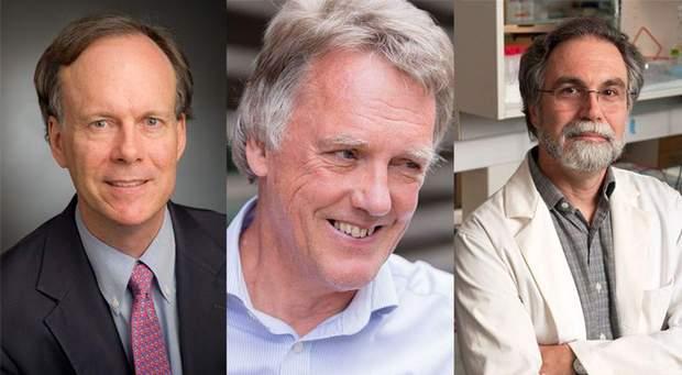 Нобелівська премія-2019, Ноебль, приз, Медицина,  Вільям Келін, Пітер Реткліф і Грег Семенза