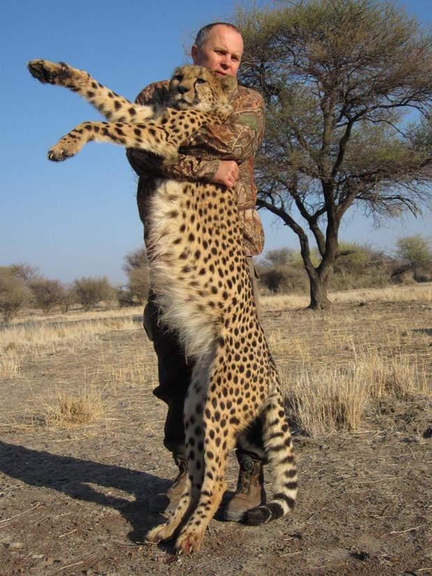 Шуфрич і леопард