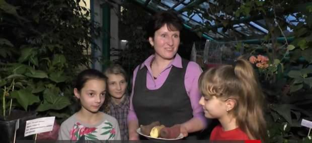 вчитель, учні, екзотика, рослини, вирощування
