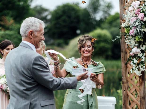 Метелики на весіллі