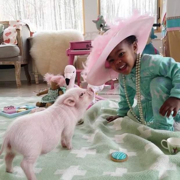 Двухлетняя девочка подружилась с маленьким поросенком: волшебные фото