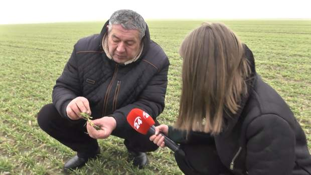 Іван Павленко