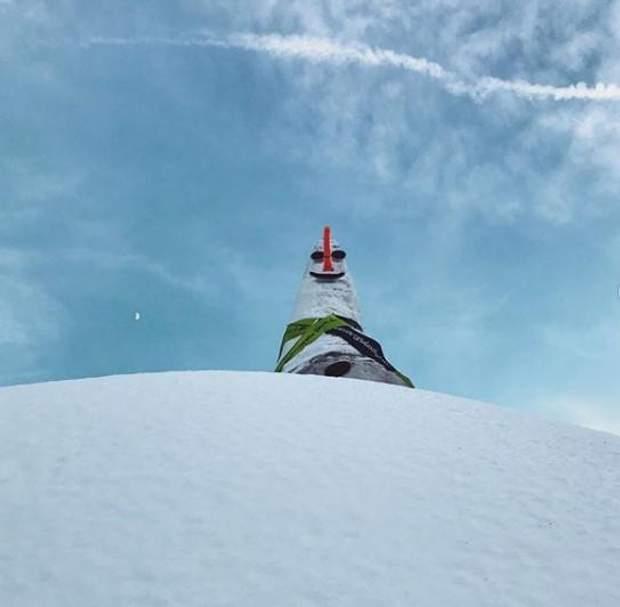 В Австрии слепили снеговика, который попал в Книгу рекордов Гиннесса (ФОТО)