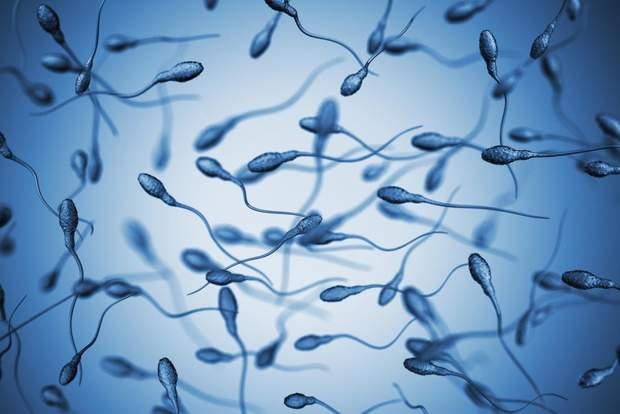 Спермограма – важливий аналіз