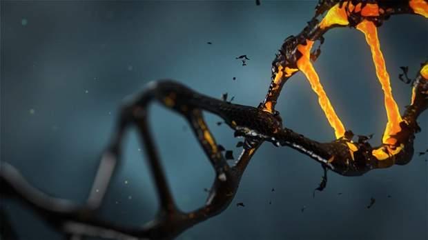 В чоловіків частіше відбуваються мутації