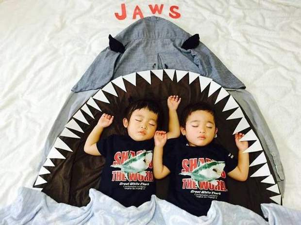 У пащі акули так солодко спиться