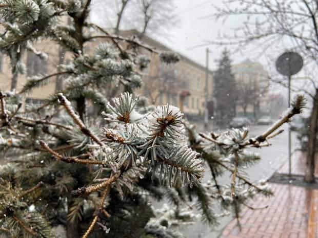 Київ в ніч на 22 березня засипало снігом