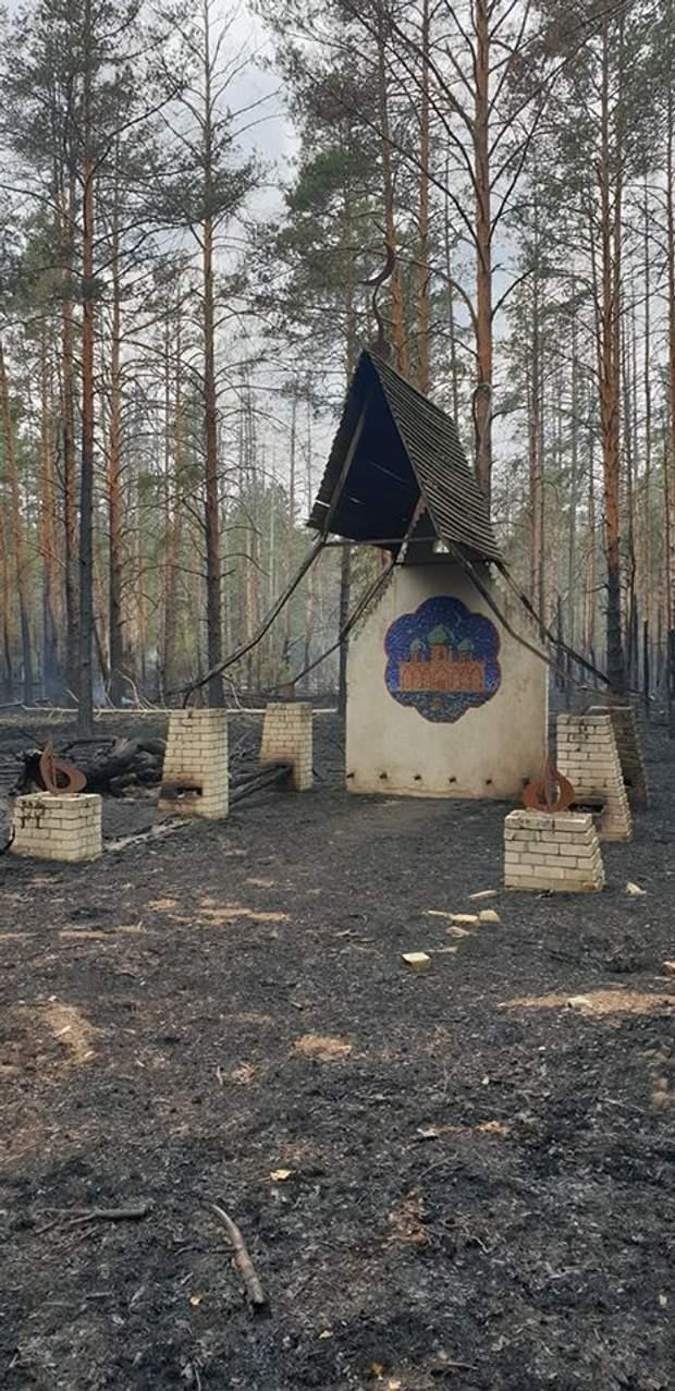 Масштабные пожары в Чернобыльской зоне уничтожили 2 села: фото