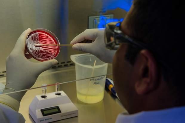 Генетичне редагування може покращити життя