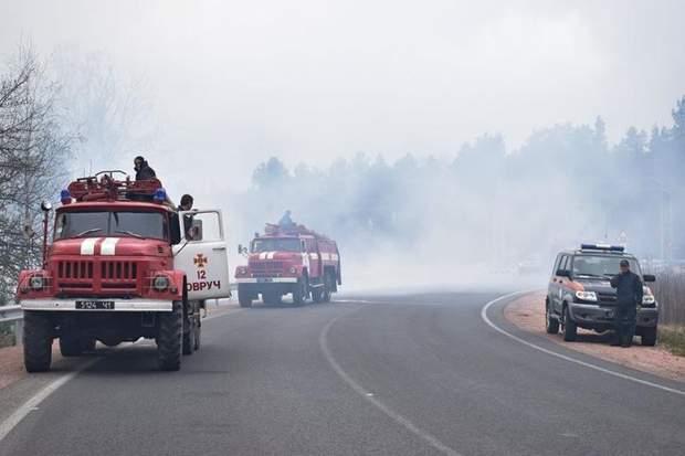 Пожежа, Житомирщина, ліс, ДСНС, надзвичайні ситуації