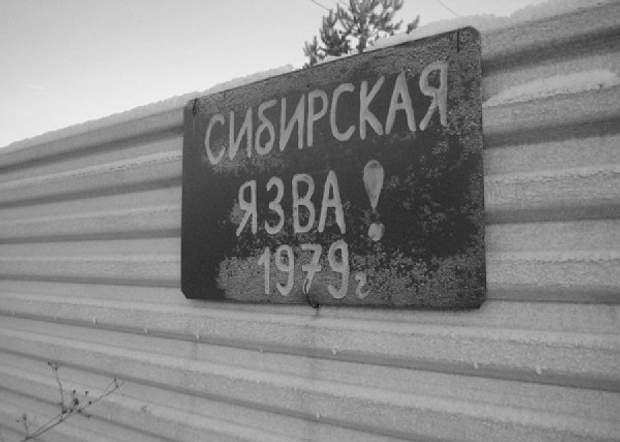 свердловськ епідемія 1979