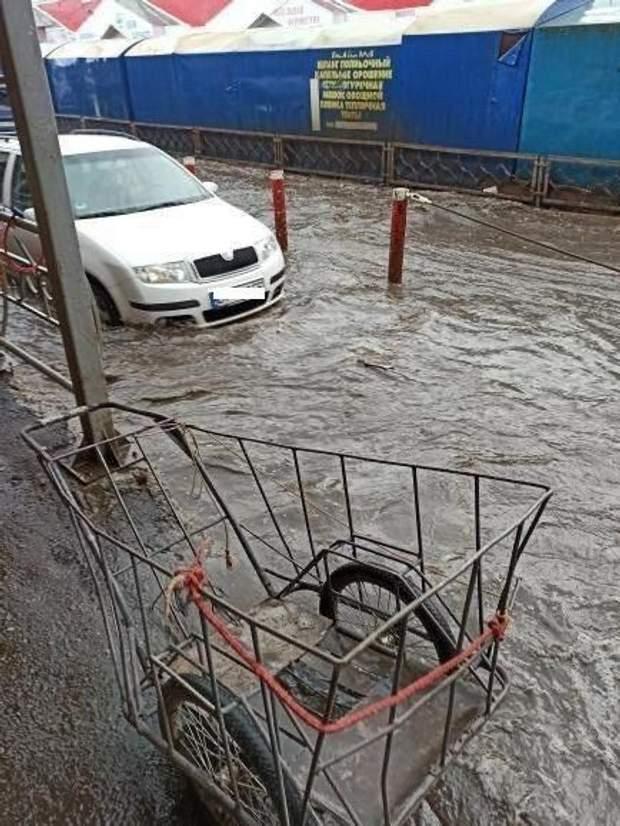 авто плавають