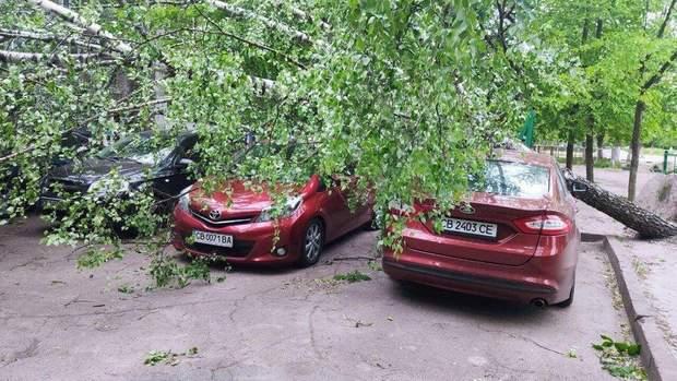 Ураган в Чернигове повырывал деревья с корнями, повреждены авто – фото, видео
