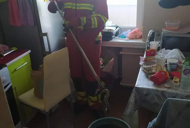 В Днепре в квартиру заползла змея: пришлось вызывать ГСЧС – видео