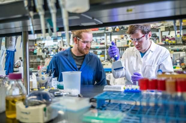 Пересадка калу покращує мікробіом
