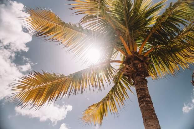 Солнечный удар: симптомы, первая помощь и как избежать