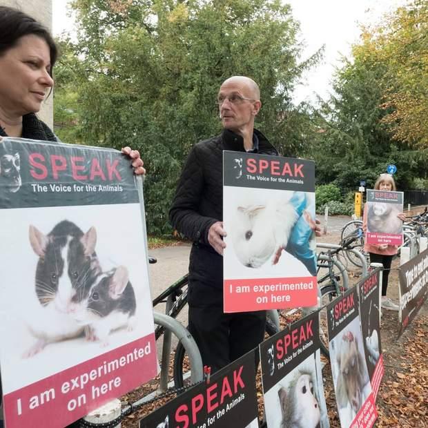 Люди проти тестування на тваринах