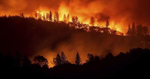Пожежа в Сибіру