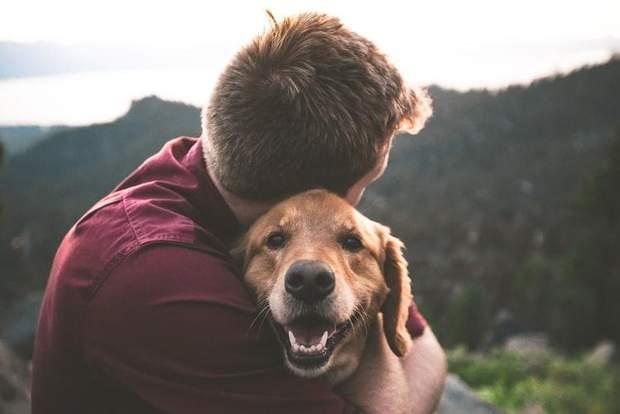 Історія дружби людини та собаки