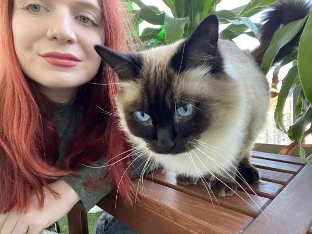 Дівчина доглядала за котами по всьому світу, поки господарі були відсутні