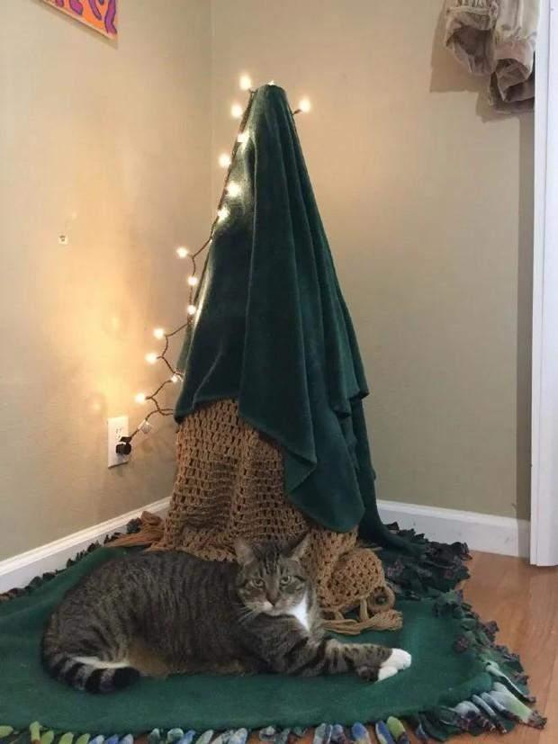 Як захистити ялинку від котиків