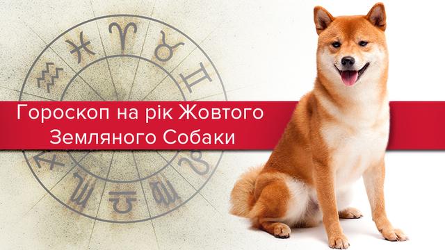 Гороскоп на 2018 год Желтой Собаки: чего ожидать всем знакам Зодиака
