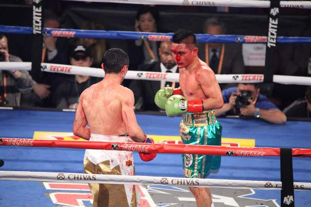 Артем Далакян – чемпион мира по версии WBA: видео боя