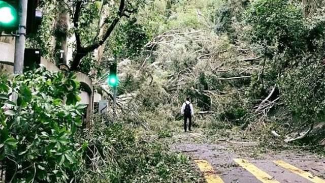 Тайфун «Мангхут» ударил по Гонконгу: эвакуация, сотни раненых и «красный» уровень опасности